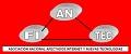 Asociacion Nacional Afectados Internet y Nuevas Tecnologias